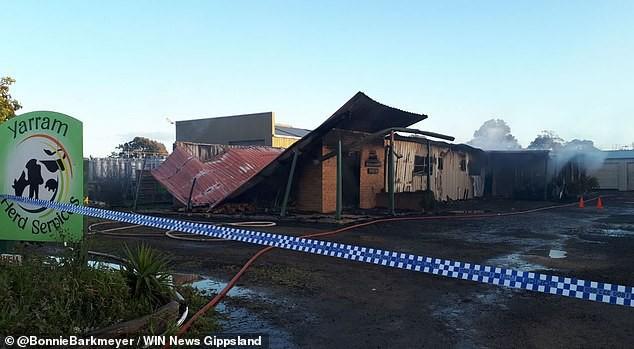 Cháy nhà kho khiến 100 thùng tinh trùng bò bắn tung tóe - Ảnh 1.