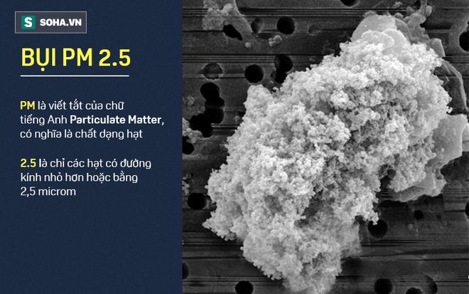 Hà Nội vào top 10 thành phố ô nhiễm không khí tệ nhất TG: Bụi PM2.5 xâm nhập vào máu ra sao? - ảnh 3