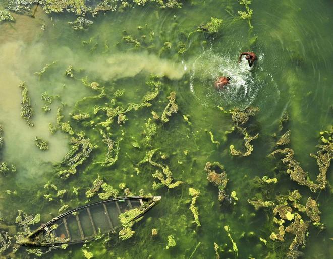 Cùng xem 30 tác phẩm tuyệt đẹp tại 1 trong những cuộc thi nhiếp ảnh thiên nhiên lớn nhất thế giới, người Việt Nam xuất sắc giành giải nhất hẳn hoi - Ảnh 9.