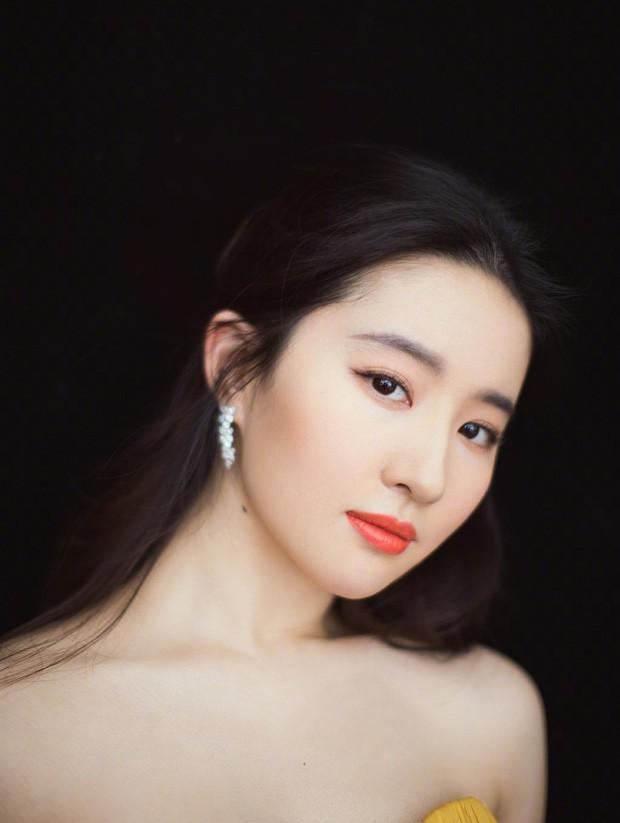 Blogger xứ Trung bầu chọn mỹ nhân bị ghét nhất showbiz: Angela Baby - Dương Mịch tranh top, khó hiểu nhất là Dương Tử - Ảnh 13.