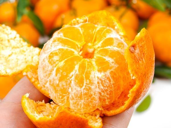 Những thực phẩm giúp ngăn ngừa ung thư phổi hiệu quả - Ảnh 2.