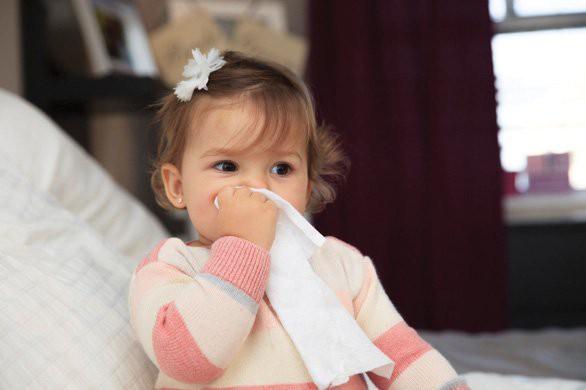 """Bệnh viêm mũi dị ứng: 4 món phải tuyệt đối kiêng, 4 món phải ăn """"cật lực"""" để bệnh tình nhanh thuyên giảm - Ảnh 2."""