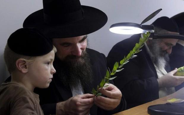 8 định luật thành công của người Do Thái: Người có tư duy sẽ hoan hỉ áp dụng, kẻ lười biếng chắc chắn tỉnh ngộ! - Ảnh 1.