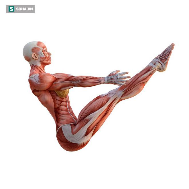 VZN News: 6 bài tập tốt nhất để trẻ hóa, giúp cơ thể bền mãi với thời gian: Bạn đã tập thử chưa? - Ảnh 3.