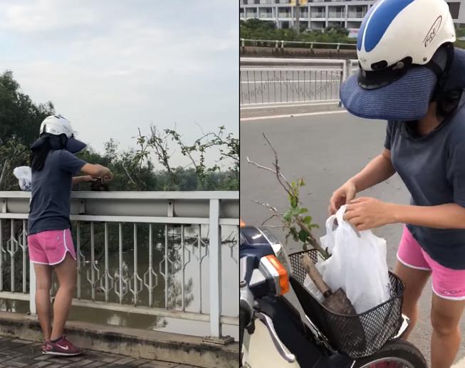 Ngang nhiên bứng trộm cây cảnh ở Phú Mỹ Hưng còn có lời lẽ gây phẫn nộ: Mức phạt nào? - Ảnh 1.