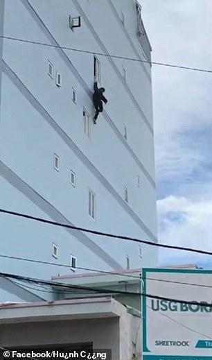 Sang Việt Nam du lịch, chàng trai Ireland leo lên tòa nhà cao tầng rồi buông tay khiến dân tình sợ xanh mặt - Ảnh 2.