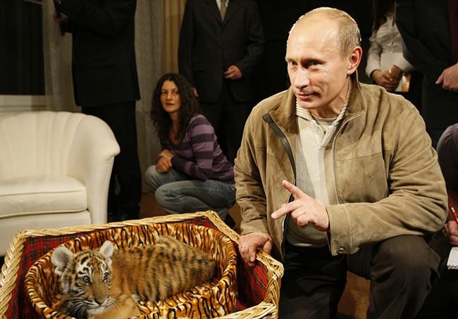Loài động vật gắn kết Thủ tướng Ấn Độ và Tổng thống Nga - Ảnh 1.