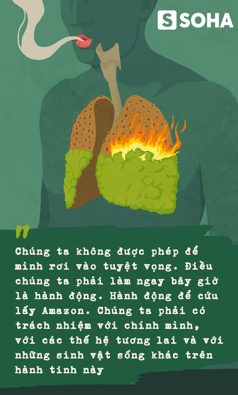 Đừng giết Amazon: Từ lá thư của thủ lĩnh da đỏ đến nguy cơ Amazon tự tử đều rất xúc động - Ảnh 12.