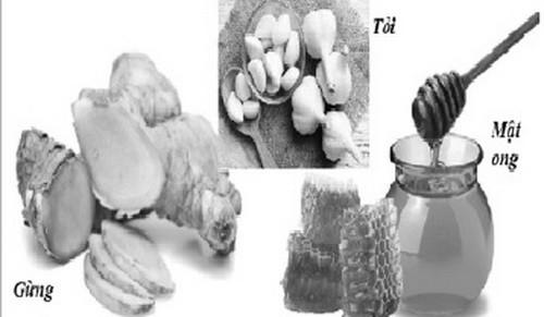 7 loại kháng sinh tự nhiên giúp phòng và trị bệnh - Ảnh 1.