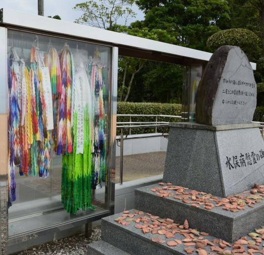 Từ vụ Rạng Đông, nhìn lại 3 thảm họa ô nhiễm từ công nghiệp của Nhật Bản: Bài học đau thương nào cho Việt Nam? - Ảnh 6.