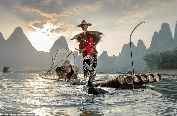 Loạt hình ảnh lão ngư bắt cá bằng chim cốc độc đáo khó rời mắt trong khung cảnh đẹp như tranh thủy mặc - Ảnh 1.