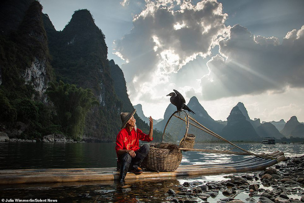 Loạt hình ảnh lão ngư bắt cá bằng chim cốc độc đáo khó rời mắt trong khung cảnh đẹp như tranh thủy mặc - Ảnh 5.