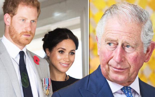 Vợ chồng Hoàng tử Harry và Meghan Markle sở hữu tổng tài sản lên tới trên 1 nghìn tỷ đồng, số tiền đó ở đâu mà ra? - Ảnh 2.