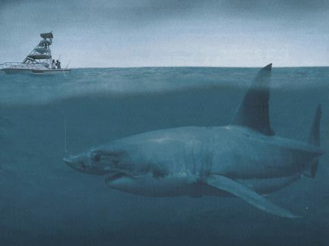 Loài động vật nào đáng sợ nhất trong lịch sử Trái đất? - Ảnh 10.