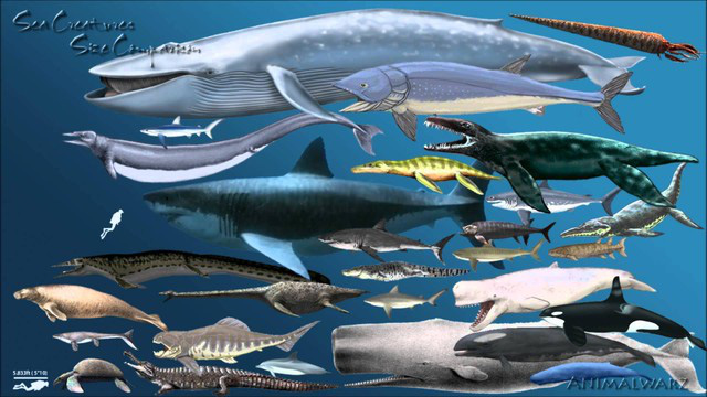 Loài động vật nào đáng sợ nhất trong lịch sử Trái đất? - Ảnh 11.