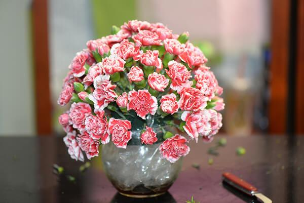 Bạn cũng có thể dùng xốp cố định ở miệng bình hoa rồi cắm hoa để tạo dáng hoa cẩm chướng tròn như này.
