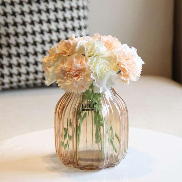 Vừa dễ cắm lại vừa đẹp, hoa cẩm chướng chính là loại hoa không thể thiếu trong ngày Tết - Ảnh 32.