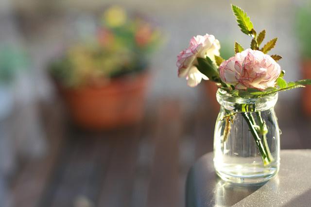 Sau khi cắm xong các bình cẩm chướng to mà còn thừa hoa hoặc có những cành bị gãy bạn hãy tận dụng để sáng tạo những lọ hoa nhỏ xinh nhé!