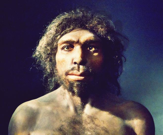 Những người anh em họ bất hạnh của loài người đã biến mất trước bình minh của nền văn minh như thế nào? - Ảnh 7.