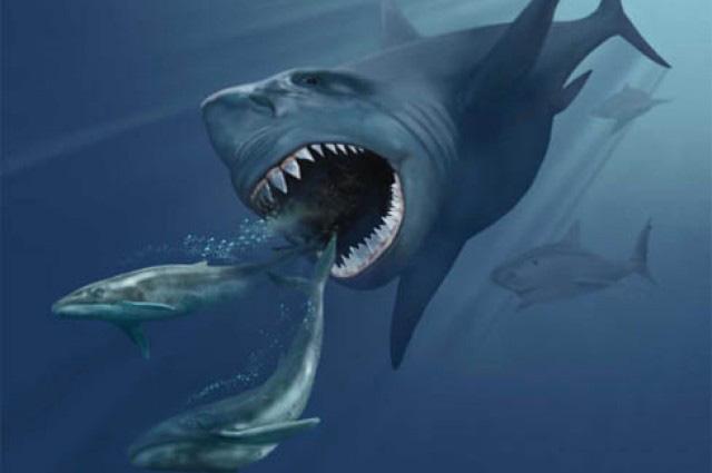 Loài động vật nào đáng sợ nhất trong lịch sử Trái đất? - Ảnh 8.