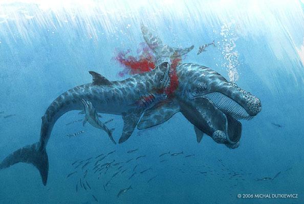 Loài động vật nào đáng sợ nhất trong lịch sử Trái đất? - Ảnh 9.