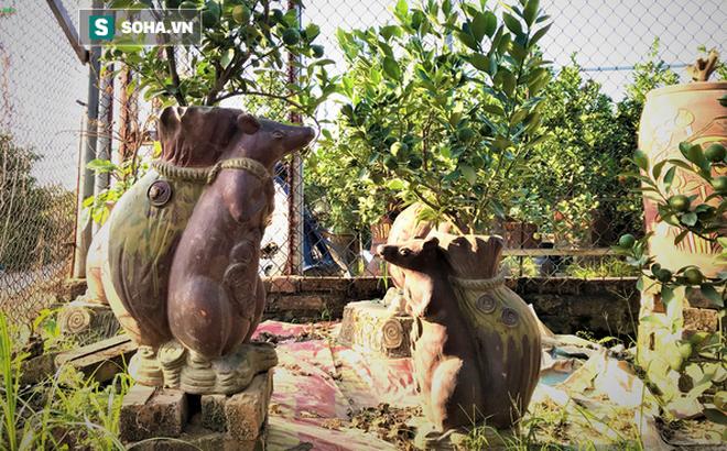 Chuột đen cưỡi vàng cõng hoa đào giá 2 triệu đồng hút khách dịp Tết 2020 - Ảnh 10.