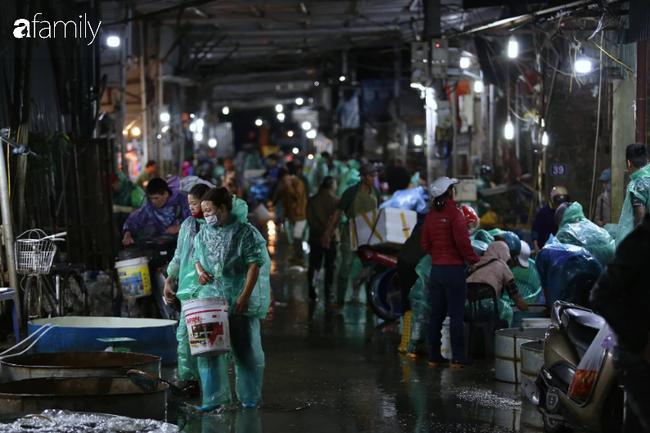 Ngày ông Công ông Táo, chợ cá lớn nhất Hà Nội cháy hàng cá chép từ rạng sáng - Ảnh 1.