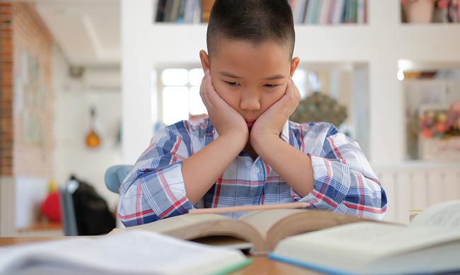 Dọn nhà đón Tết, nam sinh bật cười khi tìm được bức thư gửi bố mẹ trước lúc bỏ nhà đi bụi vì mắc lỗi... to như con kiến - Ảnh 2.