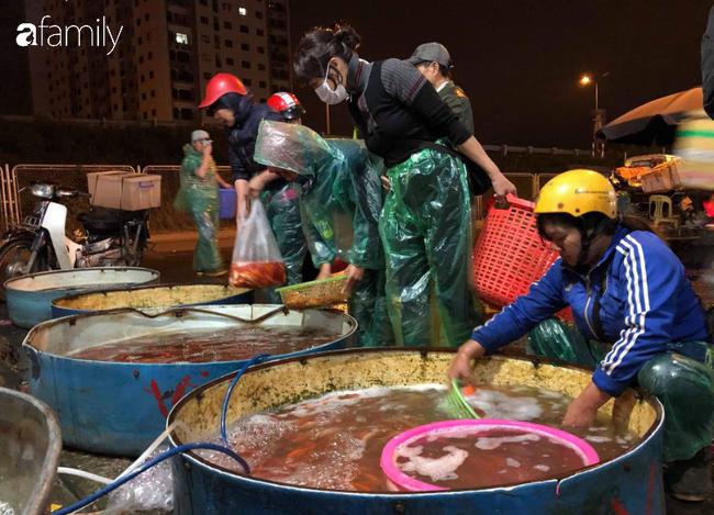 Ngày ông Công ông Táo, chợ cá lớn nhất Hà Nội cháy hàng cá chép từ rạng sáng - Ảnh 4.