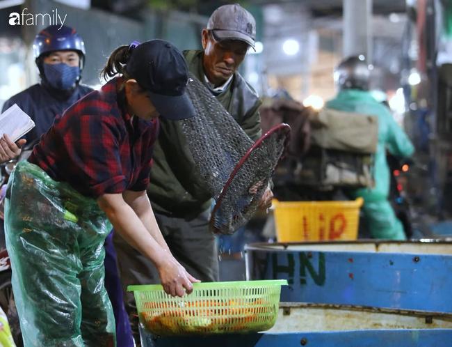 Ngày ông Công ông Táo, chợ cá lớn nhất Hà Nội cháy hàng cá chép từ rạng sáng - Ảnh 9.