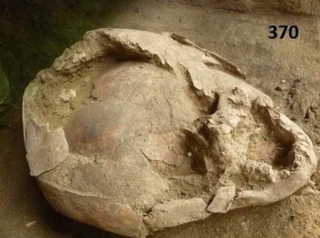 """Phát hiện hài cốt trẻ sơ sinh 2100 tuổi đội loại """"mũ bảo hiểm"""" kì dị làm từ hộp sọ của đứa trẻ khác - Ảnh 1."""