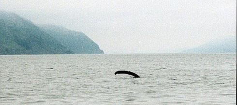 Giải mã sốc: Huyền thoại quái vật hồ Loch Ness có từ bao giờ? - Ảnh 7.