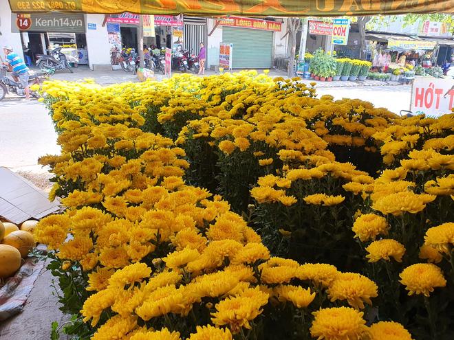 Chồng đột quỵ rồi mất trong lúc bán hoa Tết ở Sài Gòn, vợ cùng các con vội về đưa tang với hơn 2 tấn dưa còn nằm lại vỉa hè - Ảnh 3.