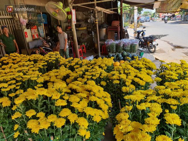 Chồng đột quỵ rồi mất trong lúc bán hoa Tết ở Sài Gòn, vợ cùng các con vội về đưa tang với hơn 2 tấn dưa còn nằm lại vỉa hè - Ảnh 7.