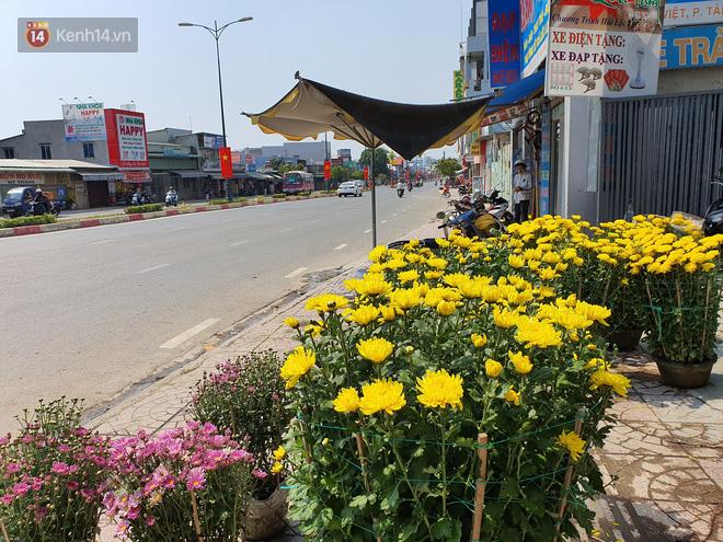 Chồng đột quỵ rồi mất trong lúc bán hoa Tết ở Sài Gòn, vợ cùng các con vội về đưa tang với hơn 2 tấn dưa còn nằm lại vỉa hè - Ảnh 10.