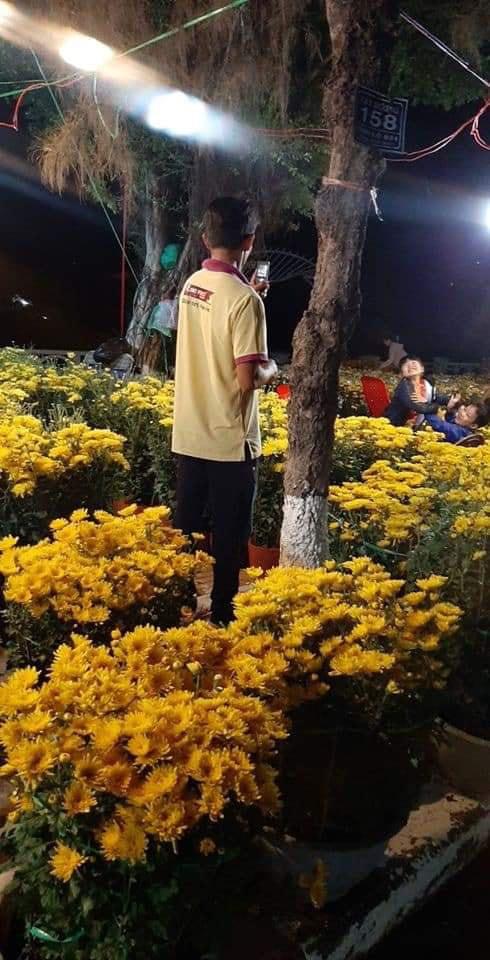 Người cha dùng điện thoại bấm phím chụp ảnh cho 2 con trong vườn hoa xuân gây xúc động - Ảnh 1.