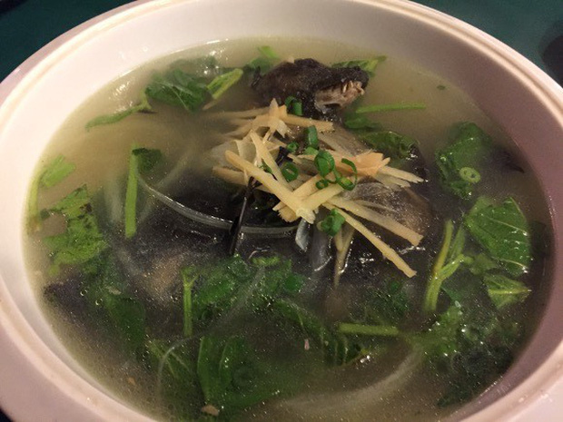 Súp dơi là món ăn thế nào mà bị nghi là nguồn cơn của virus viêm phổi Vũ Hán và từng bị cấm khi dịch Ebola bùng phát? - Ảnh 3.