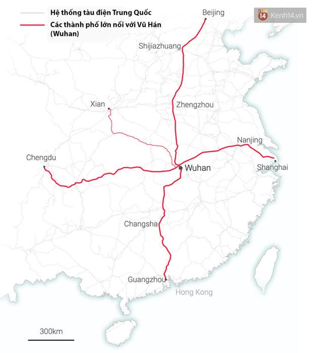 Đây là những hình ảnh trực quan nhất về dịch viêm phổi ở Vũ Hán: Dành cho ai đã quá mệt mỏi với ma trận thông tin liên quan đến virus corona - Ảnh 4.