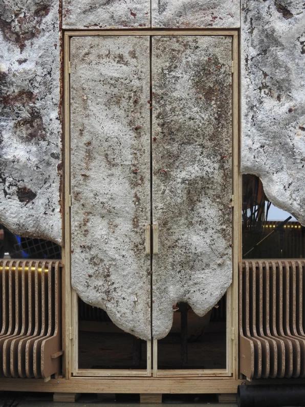Ngôi nhà phủ nấm thân thiện với Trái Đất: nấm càng tươi tốt, nó càng hút thêm nhiều CO2 khỏi không khí - Ảnh 1.