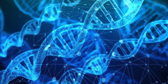 Nghiên cứu mới: Con người có tới 4 cách lão hóa khác nhau - Ảnh 1.