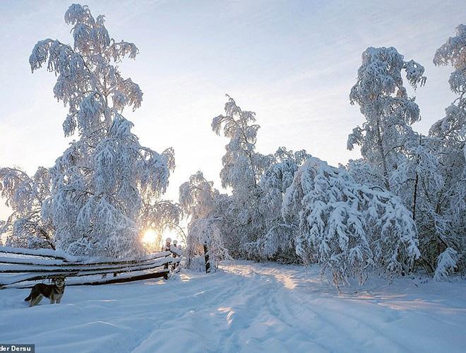 Sống trong trời lạnh -59 độ C, người dân Siberia vẫn thấy… mát nhẹ - ảnh 9