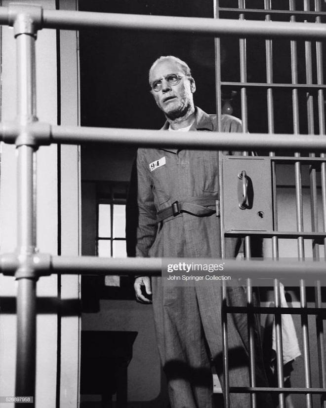 Tội phạm khét tiếng bậc nhất ở Hoa Kỳ bỗng chốc trở thành chuyên gia nghiên cứu về chim sau khi vào tù - Ảnh 3.
