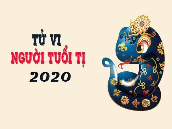 Màu sắc, hướng xuất hành may mắn mang lại tài lộc cho tuổi Tỵ trong năm Canh Tý 2020 - Ảnh 3.