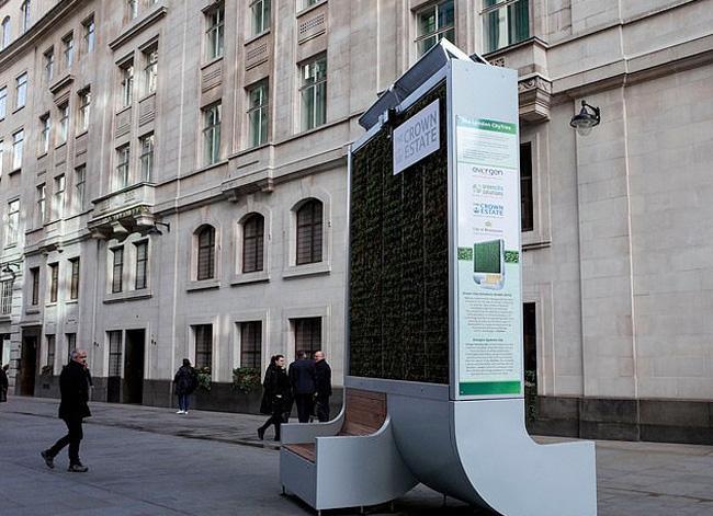 Rừng nhỏ bằng rêu lọc không khí tại Anh - Ảnh 2.