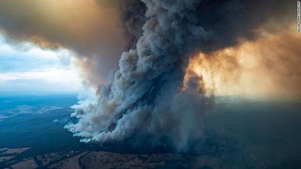 Gần NỬA TỈ sinh vật bị thiêu rụi, 1/3 số gấu Koala chết cháy: Úc đang trải qua trận cháy rừng 'đại thảm họa' thực sự mà chưa nhìn thấy lối thoát - ảnh 4