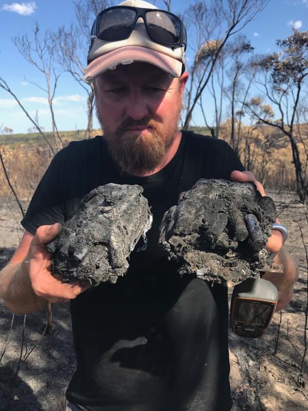 Ảnh: Đau đớn 'cái chết câm lặng' của hàng trăm triệu động vật trong cháy rừng Australia - Ảnh 8.