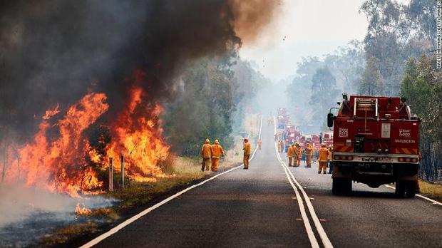 Gần NỬA TỈ sinh vật bị thiêu rụi, 1/3 số gấu Koala chết cháy: Úc đang trải qua trận cháy rừng 'đại thảm họa' thực sự mà chưa nhìn thấy lối thoát - ảnh 9