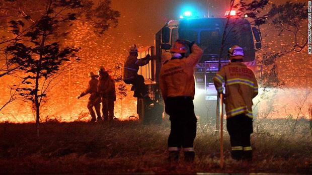 Gần NỬA TỈ sinh vật bị thiêu rụi, 1/3 số gấu Koala chết cháy: Úc đang trải qua trận cháy rừng 'đại thảm họa' thực sự mà chưa nhìn thấy lối thoát - ảnh 10