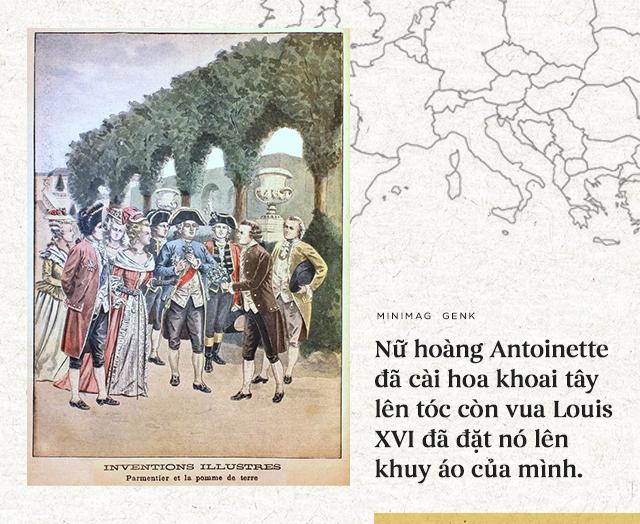 """Lịch sử thú vị của khoai tây: """"Quả táo quỷ"""" đem thịnh vượng đến cho những đế quốc - Ảnh 12."""