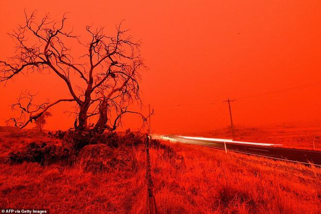 Đại thảm họa cháy rừng Úc nhìn từ không gian: Cả nước như quả cầu lửa, những mảng xanh trù phú bị thay bằng màu khói trắng tang thương - Ảnh 20.